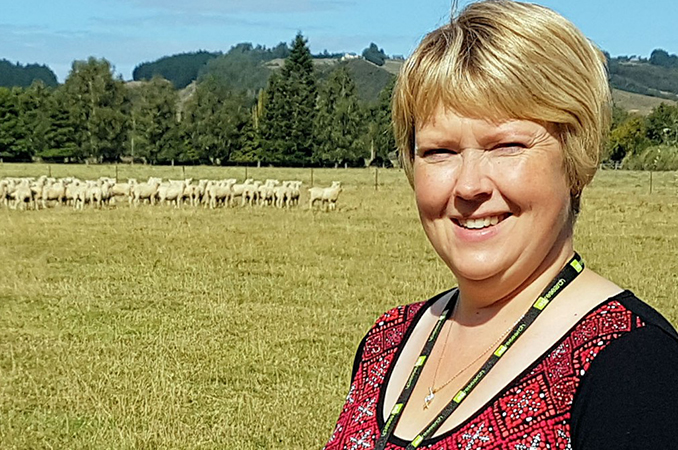 Getting better reproductive performance from hoggets
