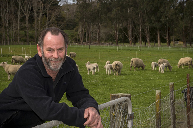 New research highlights more risks associated with pre-lamb drenching of ewes