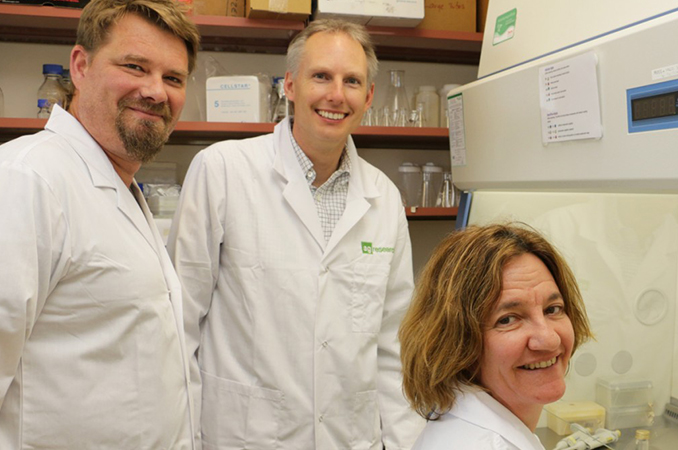 NGB scientists battle kiwifruit disease