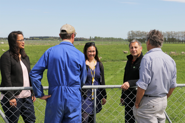 agresearch maori agribusiness in the field